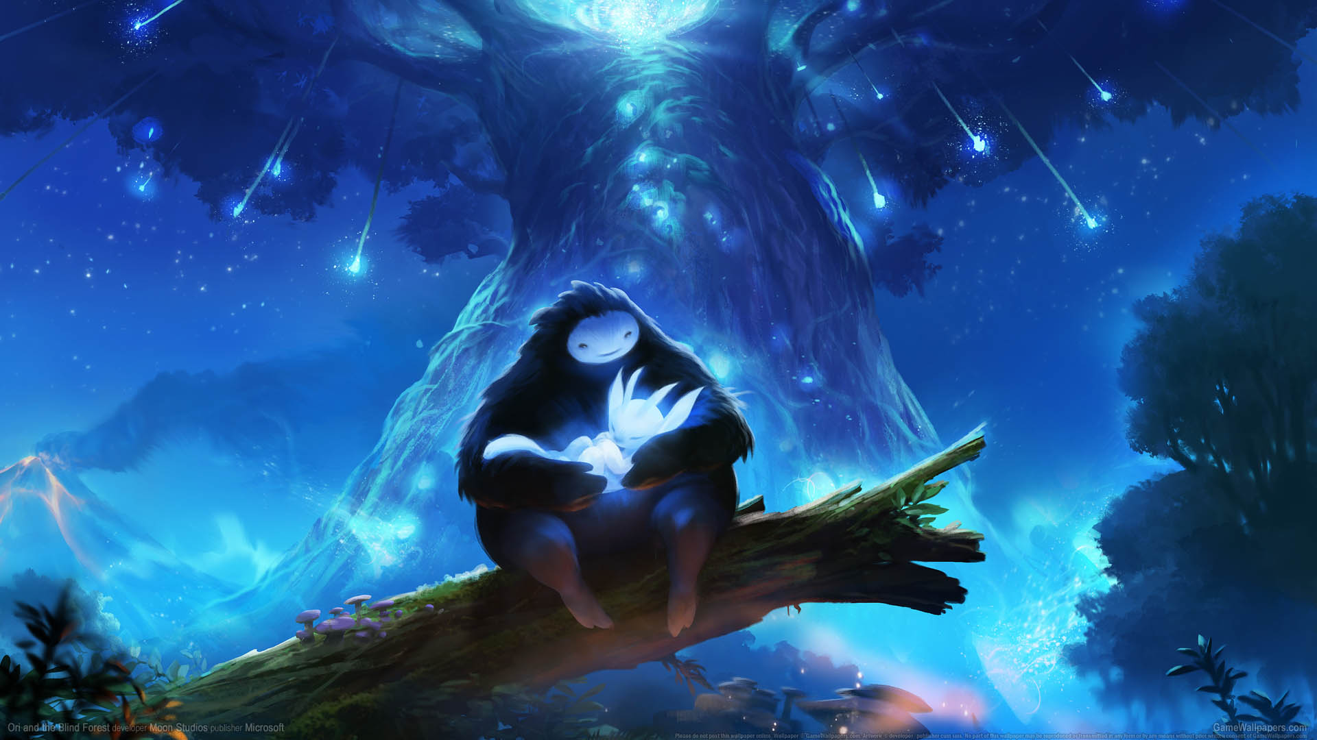 Ori And The Blind Forest Fond Décran 01 1920x1080