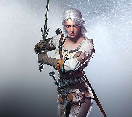 The Witcher 3: Wild Hunt Mobile Horizontal fond d'écran