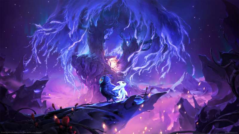 Ori and the Will of Wisps fond d'écran