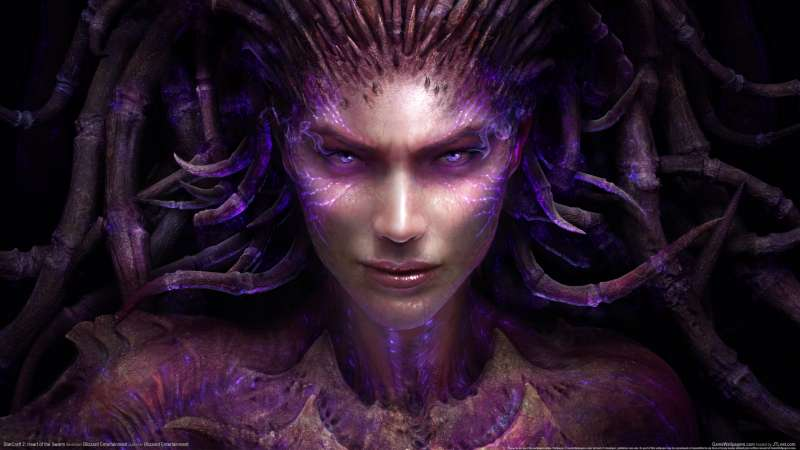 StarCraft 2: Heart of the Swarm fond d'écran